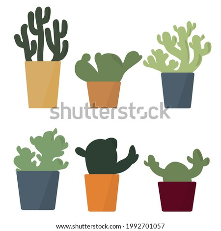 set of cactus in colorful flowerpots