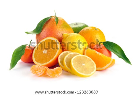 set of citrus fruit with leaves on white background
