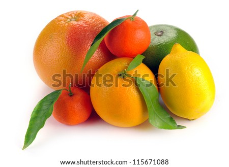 set of citrus  fruits on white background