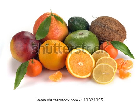 set of citrus  fruits on white background