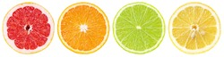 Set of colorful different citrus fruit slices. Half of grapefruit, orange, lime and lemon in row isolated on white background with clipping path.