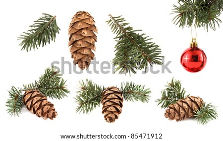 Set of cones with branches and Christmas ornament on white background - stock photo