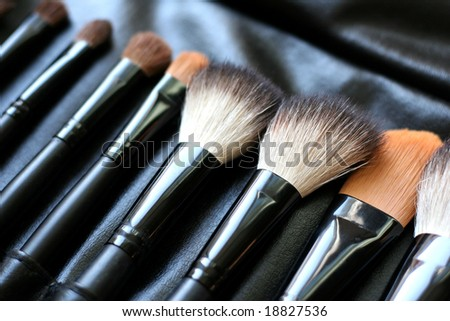 Set of cosmetic brushes in a black leather case