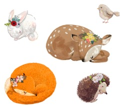 set of cute sleeping animals with floral wreath