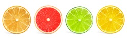 Set of different citrus slices on white background, top view. Banner design