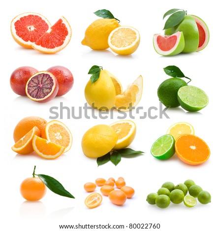 set of 12 different citruses