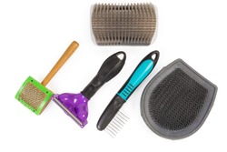 Set of different combs and brushes for care of pets hair on a white background, top view