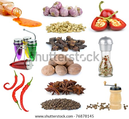 Set of different spices and condiments  isolated on the white background