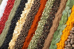 Set of different spices as background, top view