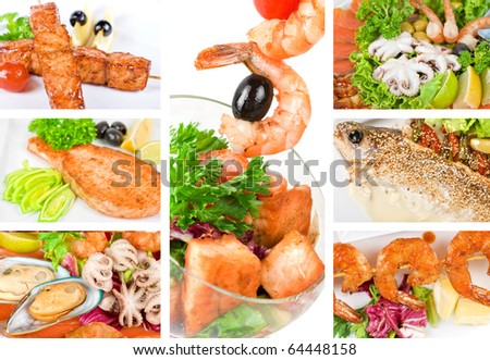 Set of different tasty fish dish