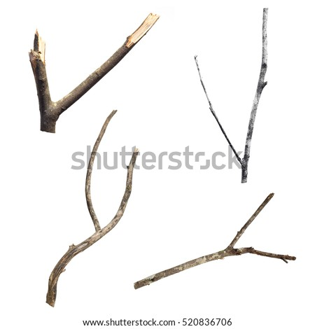 Set of dry tree branch, isolated on white background #520836706