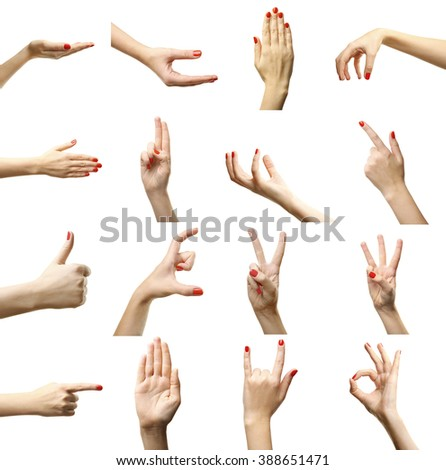 Set of female hands gestures, isolated on white #388651471