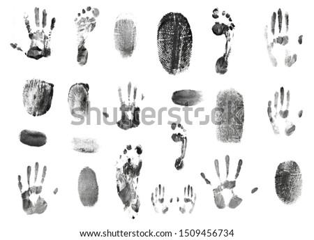 set of fingerprints pattern isolated on white #1509456734