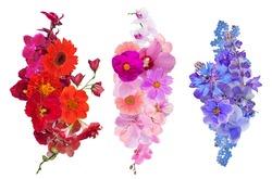 set of flower decorations isolated on white background