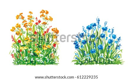 Set of Flowers Watercolor hand drawn painted fragments. Grass, plants, flora for green ecology illustrations, part of the frame, the colorful artistic element for design, lawn on a white background