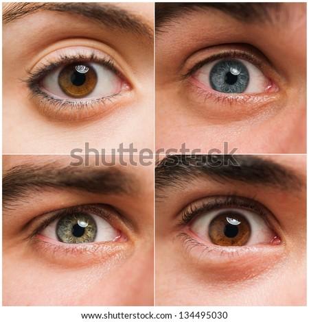 Set Of Four Open Human Eyes