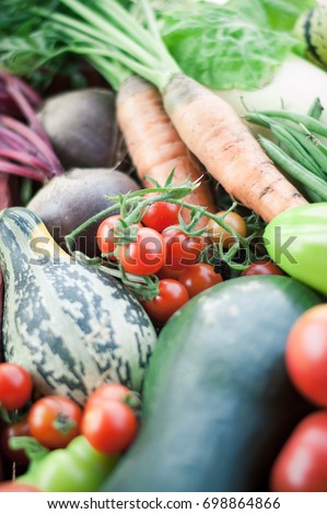 set of fresh organic vegetables in wooden box - Shutterstock ID 698864866