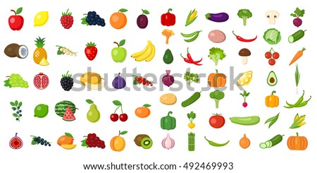 Set of fruits and vegetables. #492469993