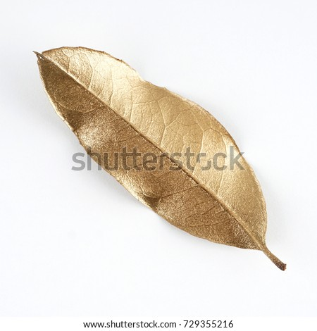 set of gold leaves. christmas...