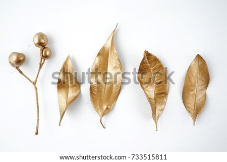 Set of golden floral design elements. Decoration elements for invitation, wedding cards, valentines day, greeting cards. Isolated. #733515811