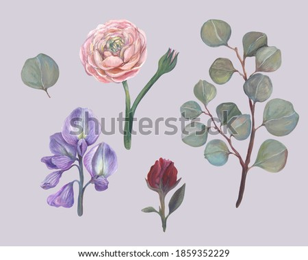 Set of gouache flowers with eucalyptus, rose, ranunculus and lupine. Soft colors is like from vintage cards ストックフォト ©