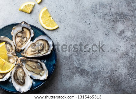 Set of half dozen fresh opened oysters in shell with lemon wedges served on rustic blue plate on gray stone background, close up, top view, space for text #1315465313