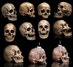 set of human skulls in different angles. Isolated on black background