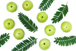 Set of Indian gooseberry fruits ( Amla,  phyllanthus emblica ) with green leaves isolated on white background. Top view. Flat lay.