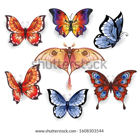 set of isolated bright, realistic exotic butterflies on a white background. Exotic.