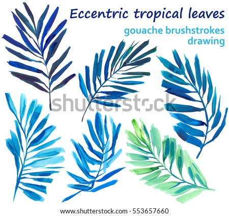 Set of isolated hand drawn fern frond leaves in gouache, eccentric style, colorful and bright colors. Tropical plants on white background. #553657660