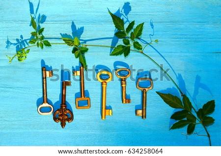 set of keys. old keys with a...