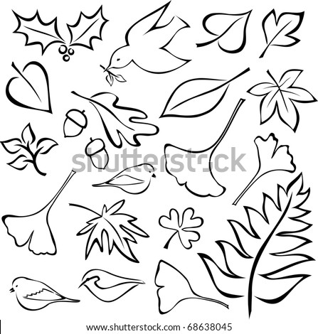 Set of Leaf and Bird Images - isolated