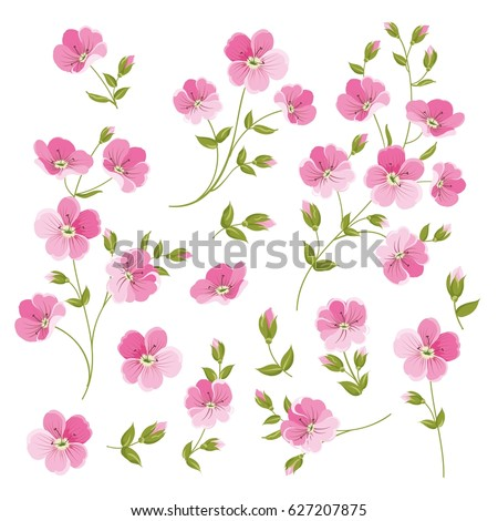 Set of Linen flowers elements. Collection of flower elements isolated on white background. Elegant spring flowers bundle.