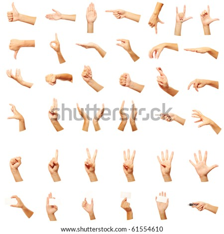 Set of many different hands over white background