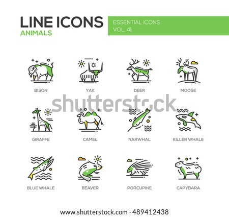 Set of modern line design icons and pictograms of animals. Bison, yak, deer, moose, giraffe, camel, narwhal, killer whale, blue whale, beaver porcupine capybara