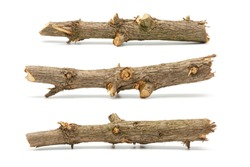Set of multiple thick pine tree sticks isolated on white background