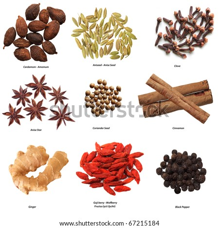 Set of nine spices isolated on white