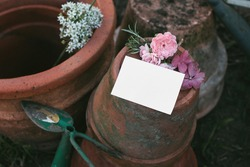 Set of old empty clay flower pots. Blank label mockup with rosemary herb, cosmos and pink rose flowers. Moody gardening lifestyle scene. Dirty and shabby ceramics composition with green hoe.