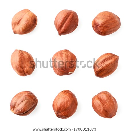 Set of peeled hazelnuts closeup on white. Isolated Foto d'archivio ©
