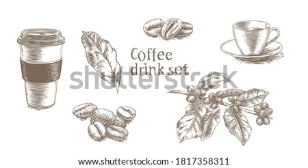Set of pictures about coffee drink (cups, plant, coffee beans) Photo stock ©