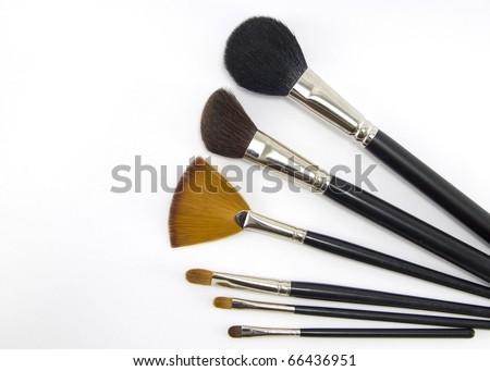 Set of professional makeup brushes.