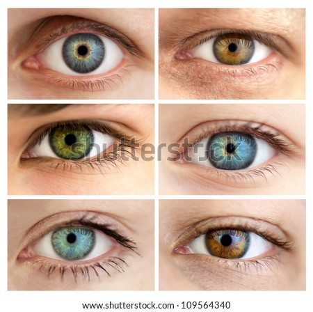 Set of 6 Real Different Open Eyes / Huge Size / Macro #109564340