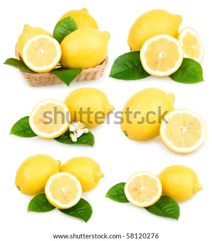 Set of ripe lemon fruits isolated on white background