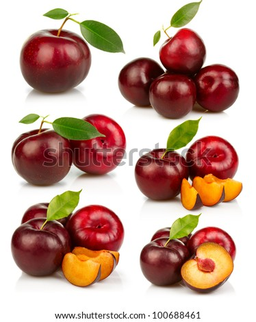 Set of ripe red plums fruit isolated on white background