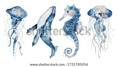Set of sea animals. Blue watercolor ocean fish, Medusa, whale, seahorse