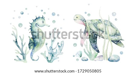 Set of sea animals. Blue watercolor ocean fish, turtle, whale and coral. Shell aquarium background. Nautical marine illustration