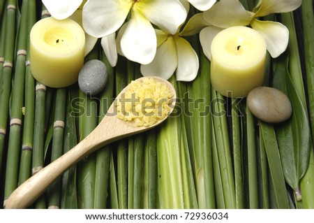 Set of stones on green bamboo grove background