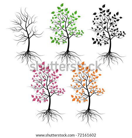 Set of trees on a white background. Trees have foliage of different color.EPS version is available as ID 70762213.