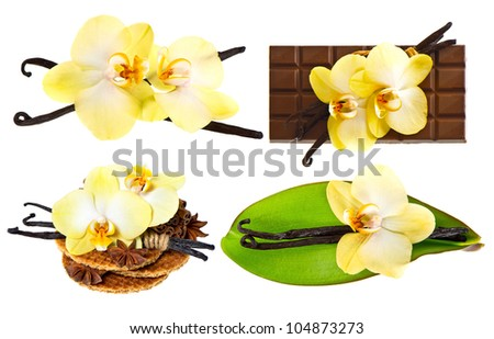 set of vanilla pods and orchid flower isolated on white background