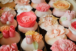 Set of various flower fondant cupcakes in plastic box ready to be delivered - bright and colorful pink set in outdoor lighting - selective focus